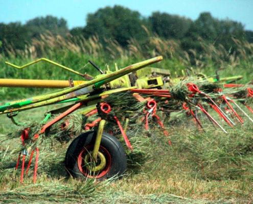 Bewirtschaftung Weideflächen