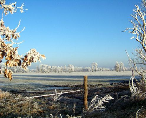 Idyllische Winterstimmung in Löwenbruch